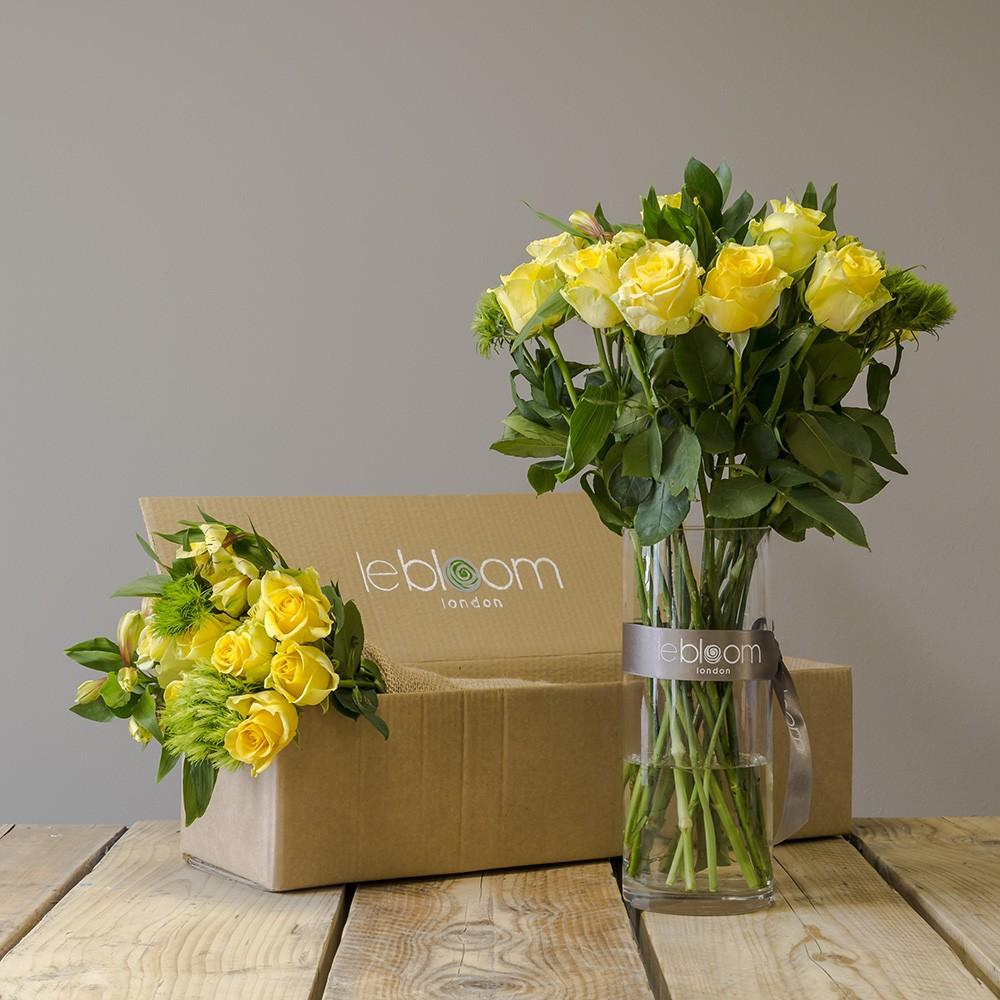 Flower Box Lipton