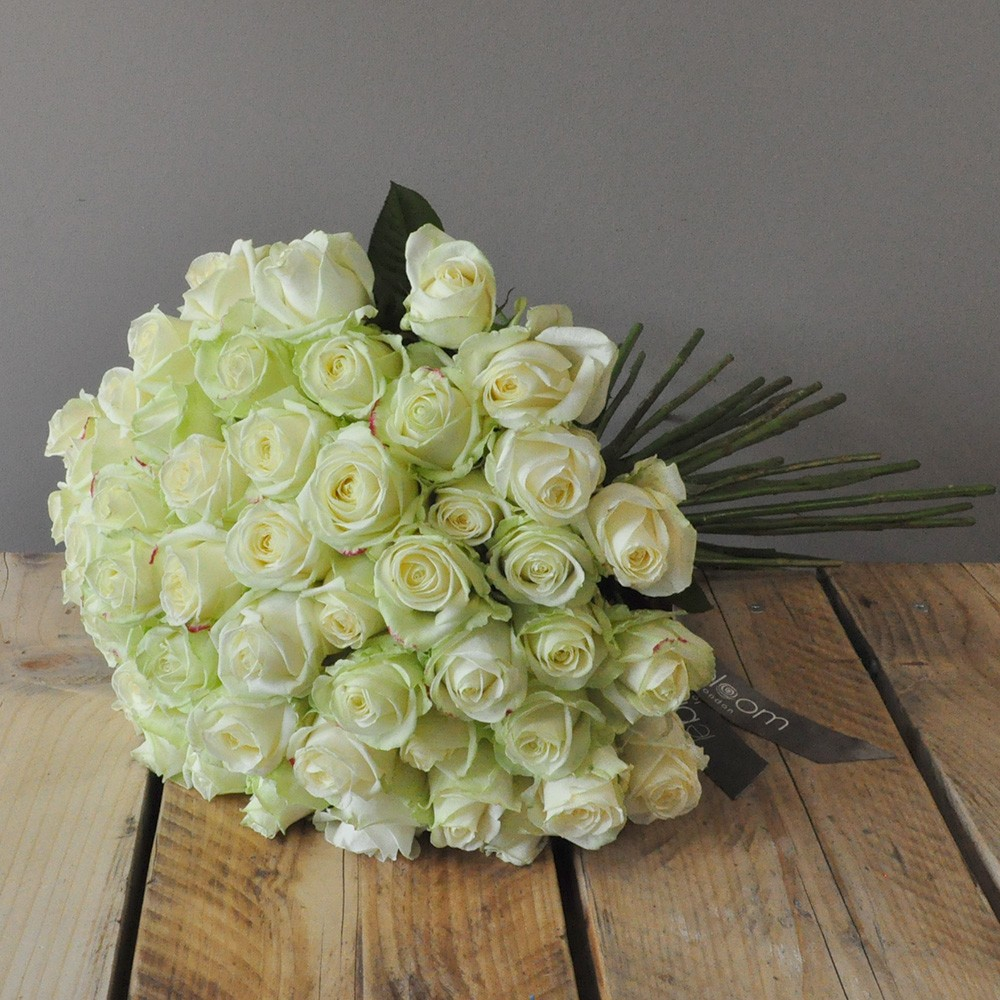50 White Avalanche Roses